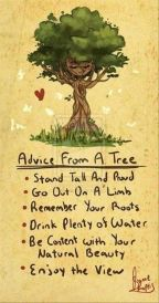 Advice for the soul